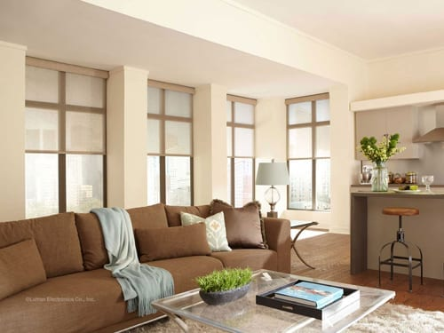 Contemporary Roller Shades