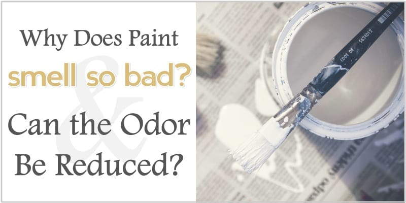 why does paint smell so bad and can the odor be reduced the shadey. Black Bedroom Furniture Sets. Home Design Ideas